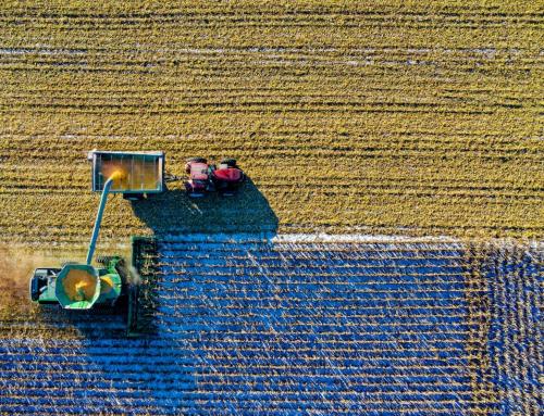 Importancia de la tecnología en la industria alimentaria